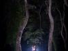 fotografiranje-poroke-kodarinov-mlin-372-medium